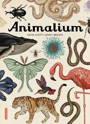 Animalium.jpg