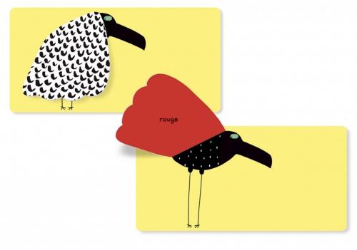 Oiseaux-couleurs_1-1024x720.jpg