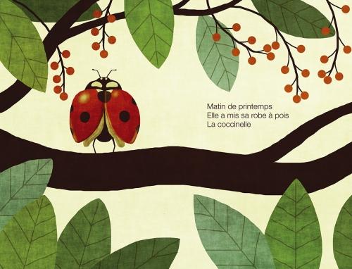Haiku-Coccinelle-p10-11.jpg