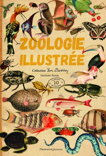 9782081490031_ZoologieIllustree_Couv_HD.jpg