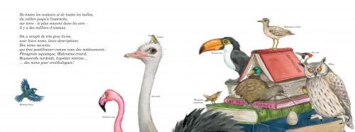 Oiseaux DP1.jpg