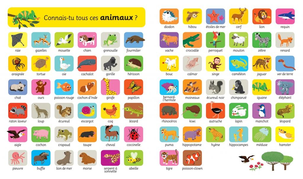 Mon imagier flap des animaux joue avec les mots mon - Imagier animaux de la ferme ...