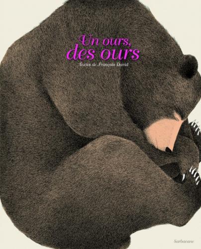 couv-un-ours-des-ours-620x767.jpg