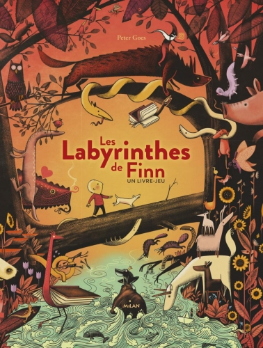 les-labyrinthes-de-finn.jpg
