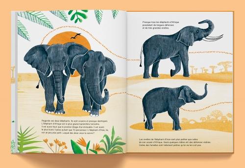 Elephant-02.jpg