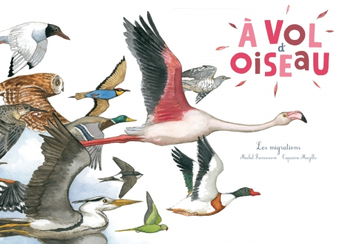 Oiseaux couv.jpg